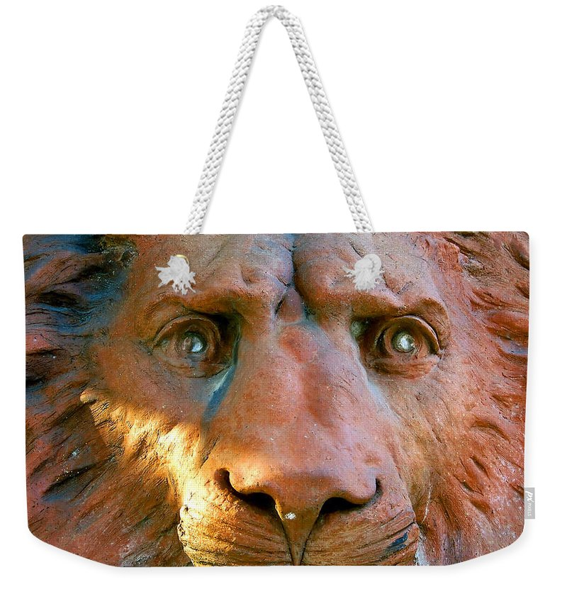 Saint Augustine Florida Weekender Tote Bag featuring the photograph Lion Of Saint Augustine by David Lee Thompson
