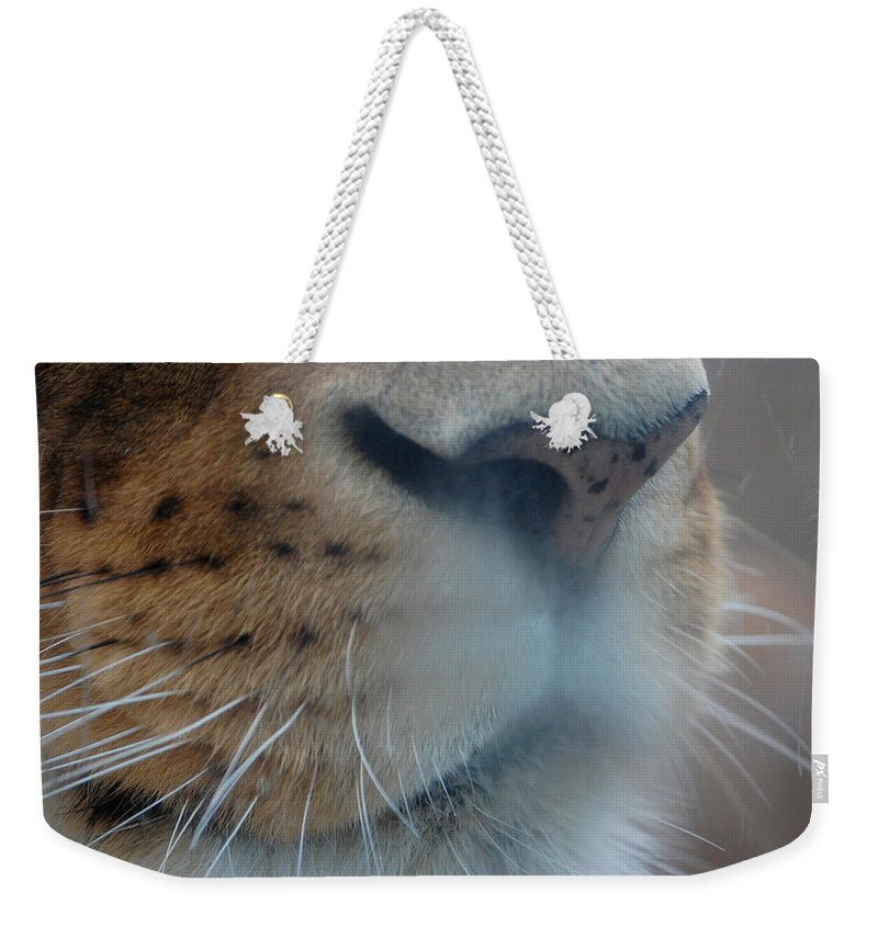 Lion Weekender Tote Bag featuring the photograph Lion's Breath by Lisa Kane