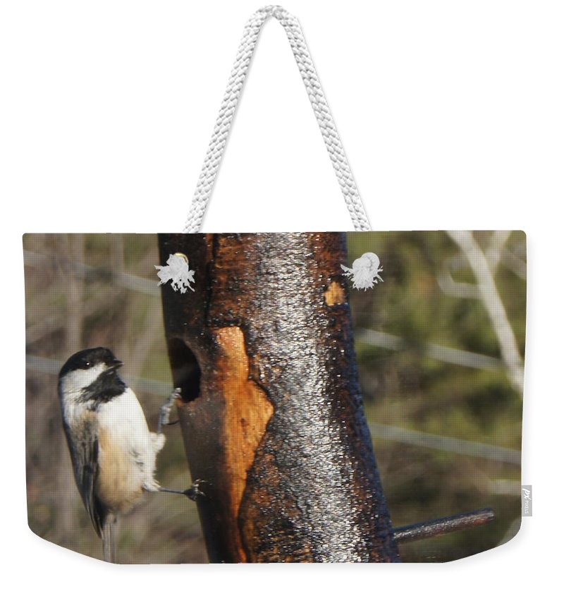 Weekender Tote Bag featuring the photograph Little Bird by Line Gagne