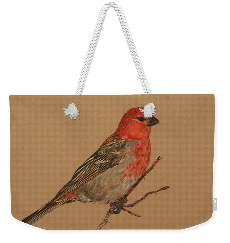 Bird Weekender Tote Bag featuring the drawing Little Bird by Michelle Miron-Rebbe