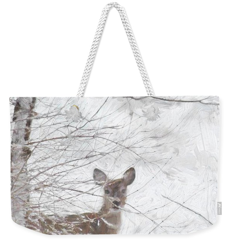 Deer Weekender Tote Bag featuring the photograph Little Doe In Snow by Benanne Stiens