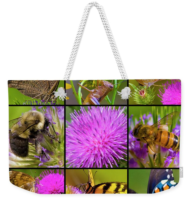 Nature Weekender Tote Bag featuring the photograph Little Guys by Betsy Knapp