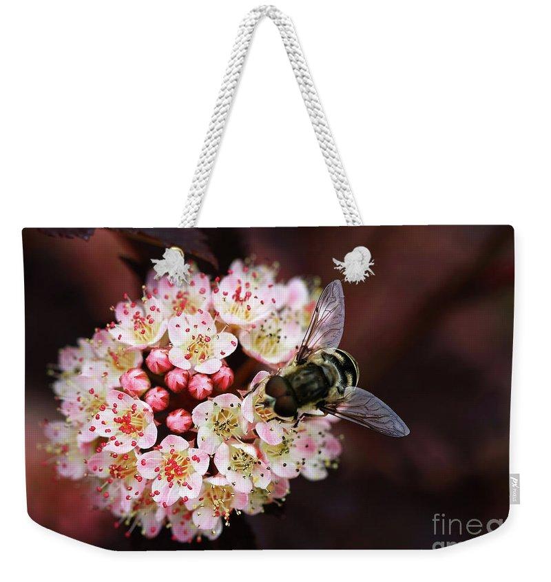 Flowers Weekender Tote Bag featuring the photograph Little Pink Flowers by Deborah Benoit