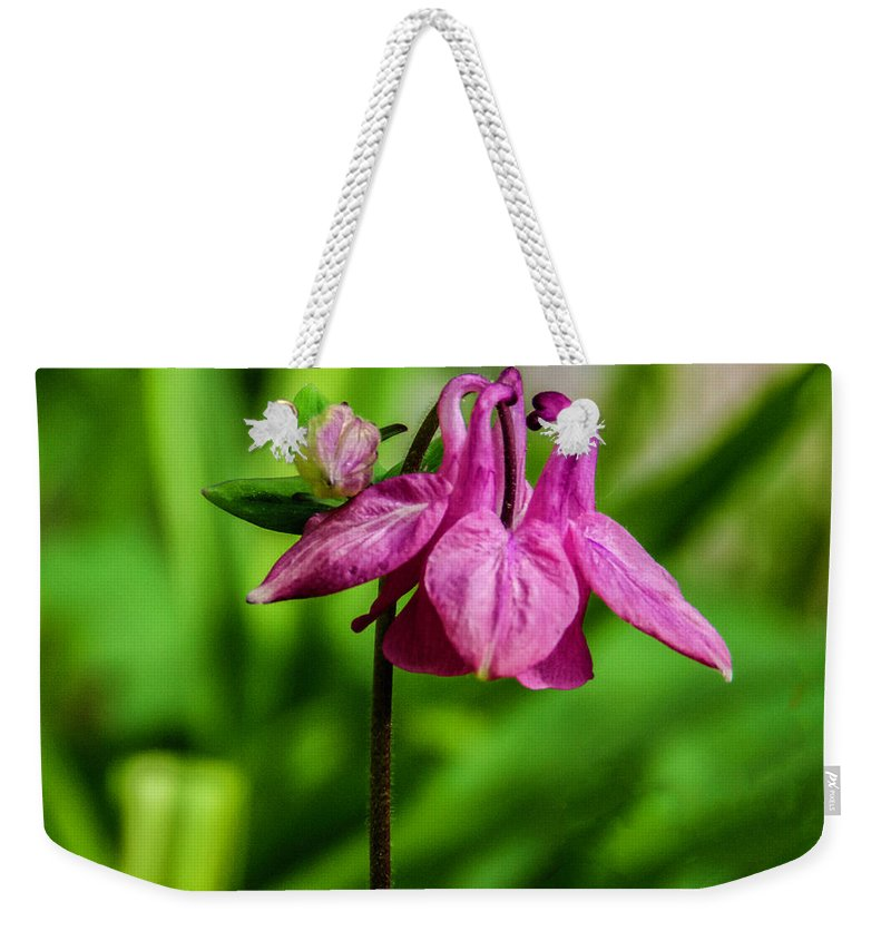 Pink Flower Weekender Tote Bag featuring the photograph Little Pink Lamp by Wolfgang Stocker