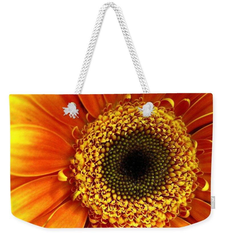 Flower Weekender Tote Bag featuring the photograph Little Sun by Rhonda Barrett