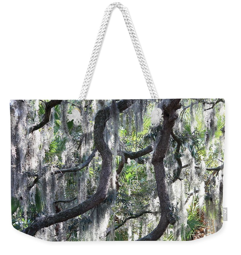 Spanish Moss Weekender Tote Bag featuring the photograph Live Oak With Spanish Moss And Palms by Carol Groenen