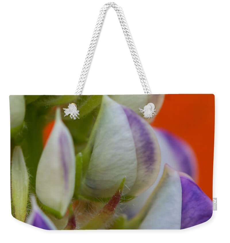 Interior Design Weekender Tote Bag featuring the photograph Lively Lupine by Lisa Knechtel