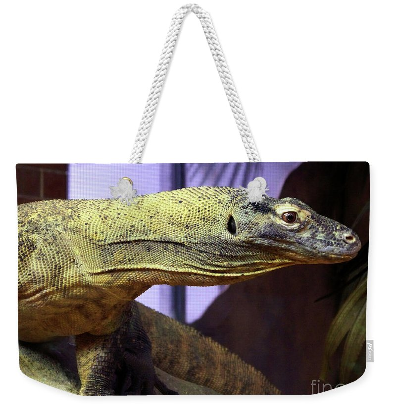 Lizard Weekender Tote Bag featuring the photograph Lizard by Charles Long