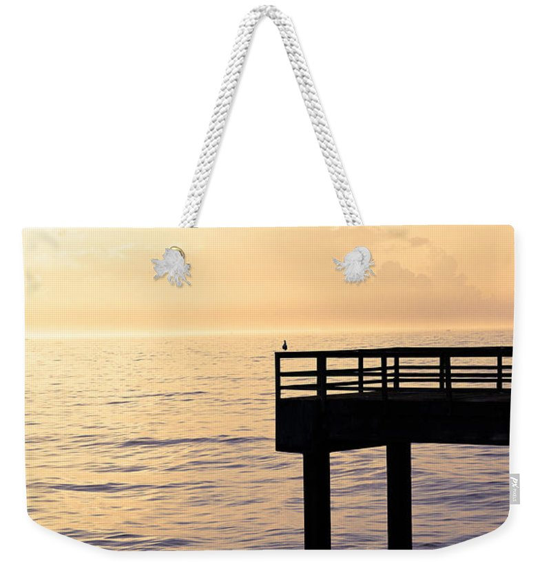 Beach Weekender Tote Bag featuring the photograph Lone Bird At Morning by Marilyn Hunt