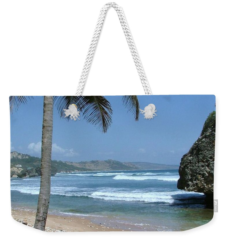 Carribean Weekender Tote Bag featuring the photograph Lone Palm On Barbados Coast by Neil Zimmerman