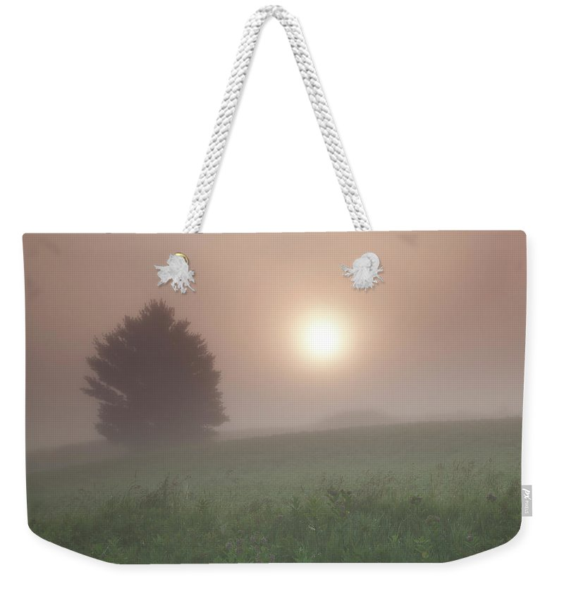 Fog. Foggy. Mist Weekender Tote Bag featuring the photograph Lone Tree In The Fog by Kevin Kludy