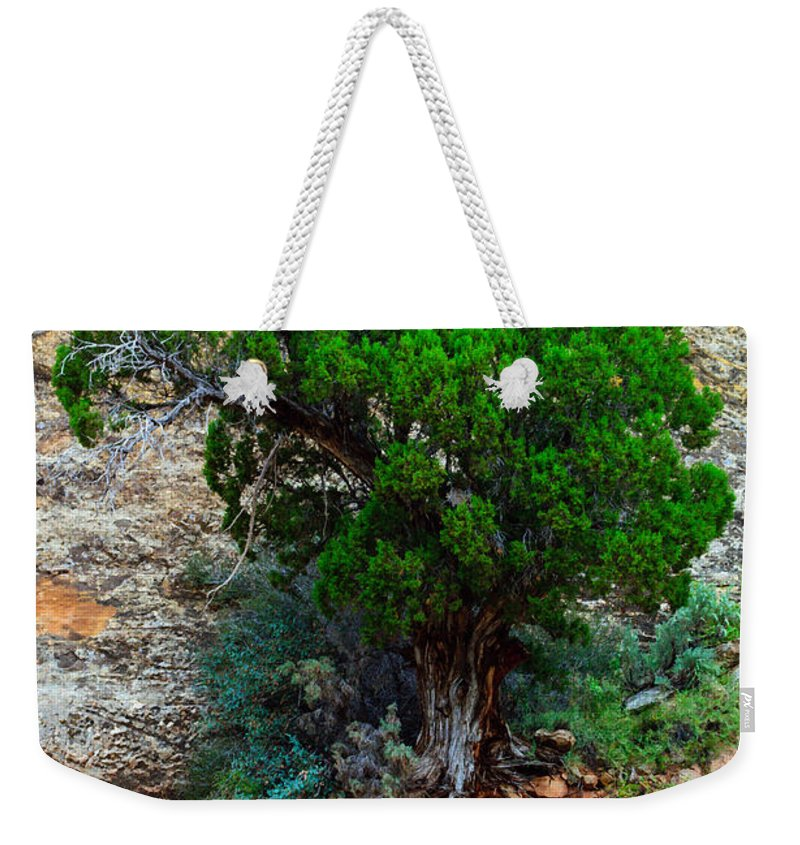 Utah Weekender Tote Bag featuring the photograph Lone Tree On A Cliff by Tikvah's Hope