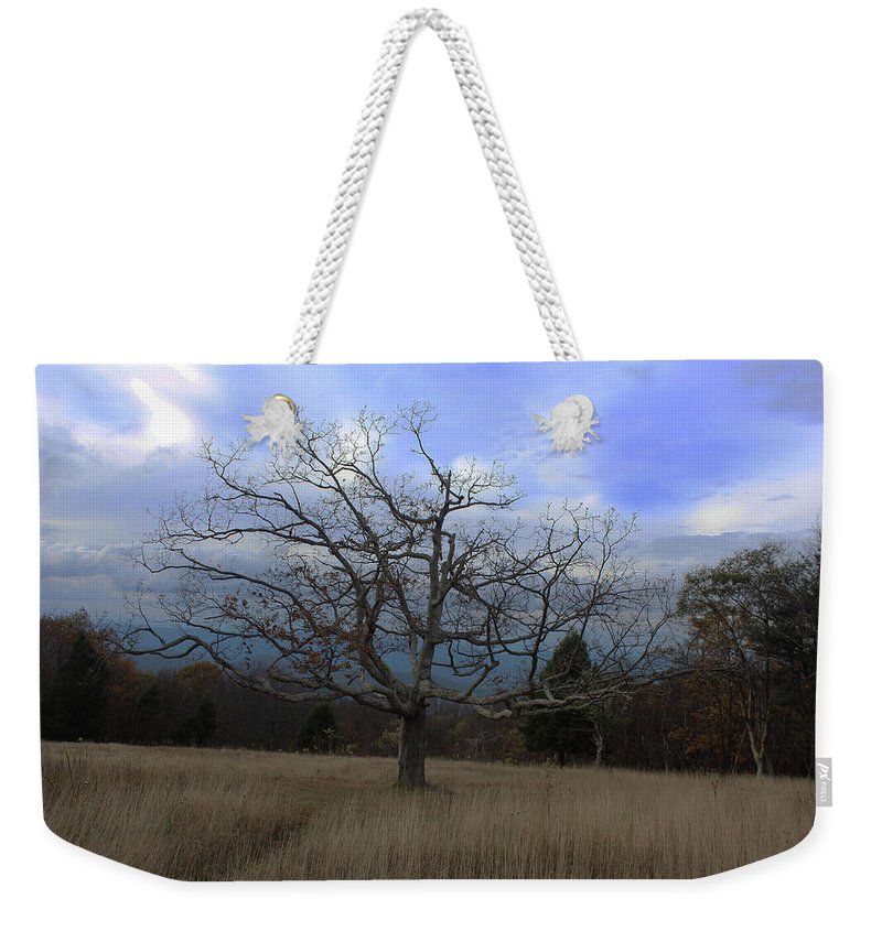 Tree Weekender Tote Bag featuring the photograph Lone Tree by Paul A Williams