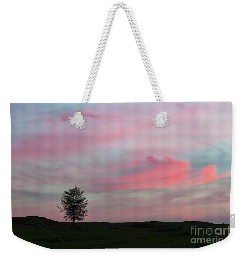 Tree Weekender Tote Bag featuring the photograph Lone Tree Sunset by Alexis Manson