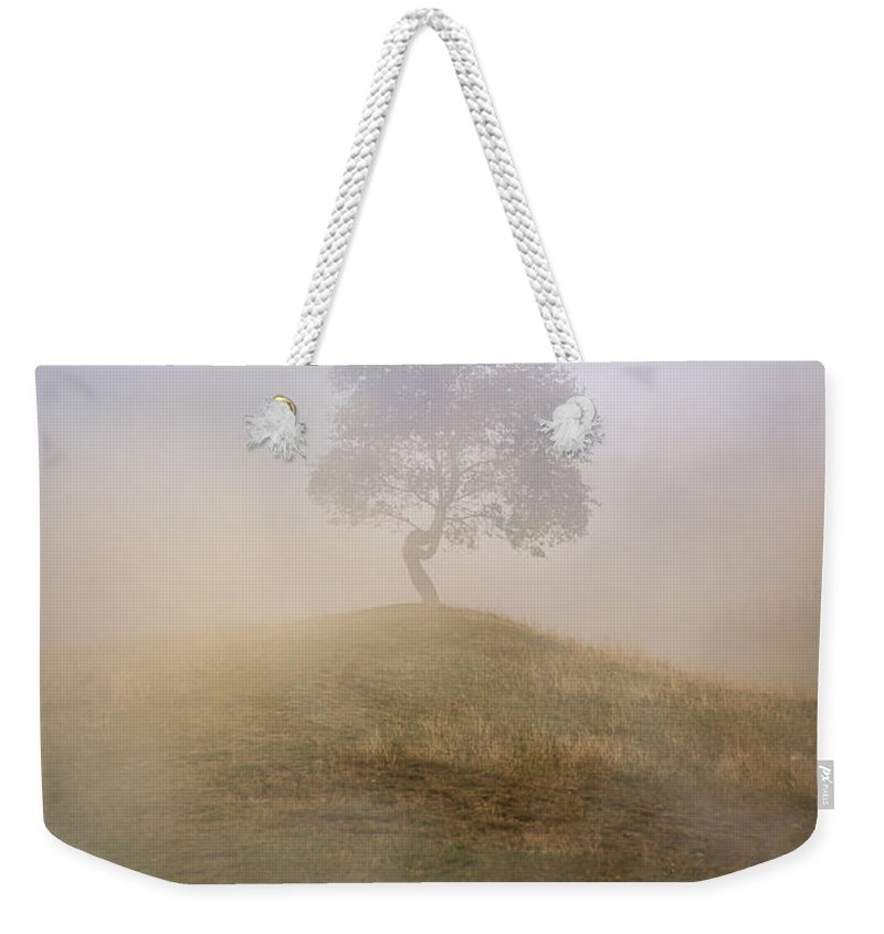 Tree Weekender Tote Bag featuring the photograph Loneliness At Foggy Dawn by Jaroslaw Blaminsky