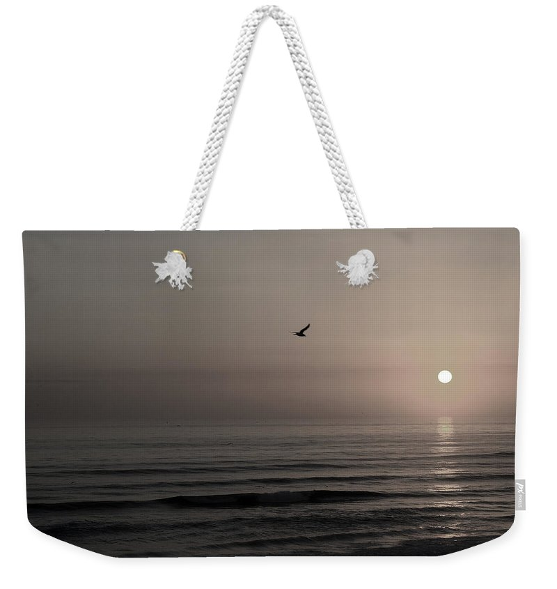 Beach Ocean Wave Sunrise Sunset Sun Bird Gull Fly Flight Water Vacation Peace Nature Relax Peace Weekender Tote Bag featuring the photograph Lonely Flight II by Andrei Shliakhau
