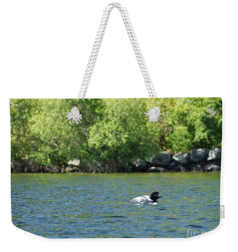 Loon Weekender Tote Bag featuring the photograph Lonely Loon Taking The Red Eye by Judy Carr