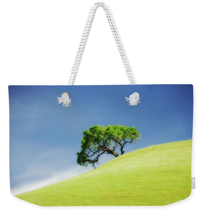 Castle Rock Park Weekender Tote Bag featuring the photograph Lonely Summer by Donna Blackhall