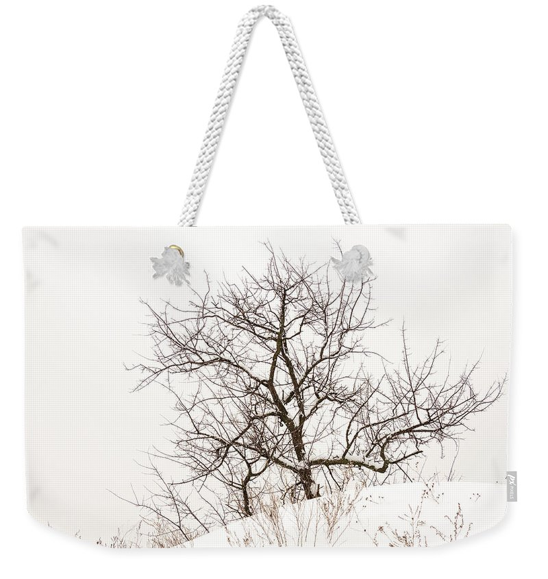 Minimalism Weekender Tote Bag featuring the photograph Lonely Tree On A Hill by Pavel Melnikov