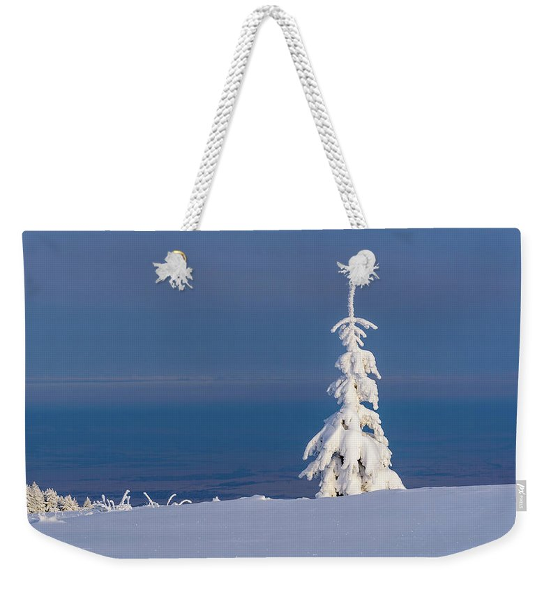 Snow Weekender Tote Bag featuring the photograph Lonely Tree On A Mountain Top by Todor Nikolov