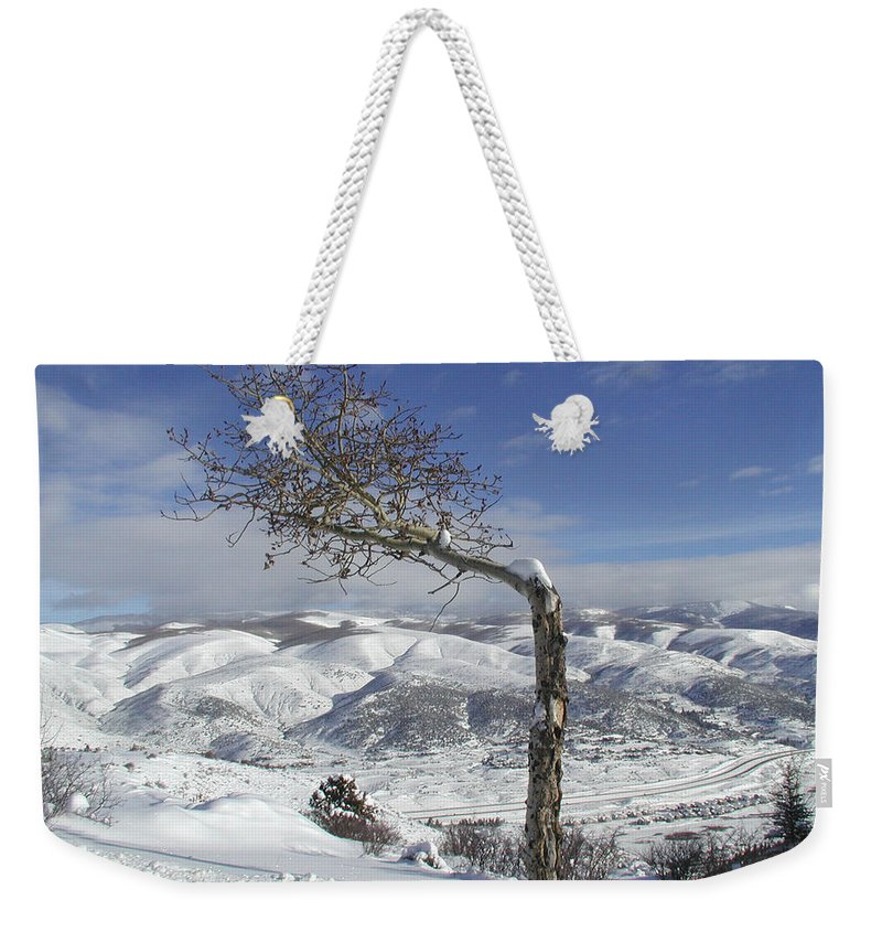 Tree Weekender Tote Bag featuring the photograph Lonely Tree by Tom Reynen