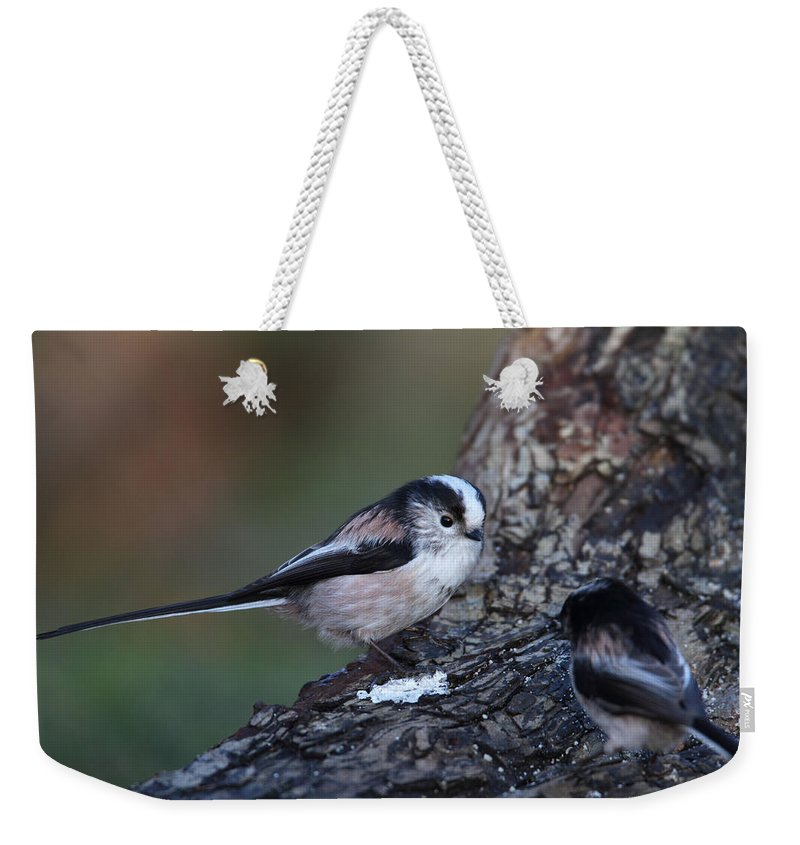 Long Tailed Tit Weekender Tote Bag featuring the photograph Long-tailed Tit by Bob Kemp
