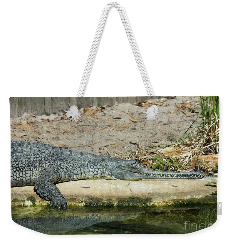 Alligator Weekender Tote Bag featuring the photograph Look At All Those Teeth by Deborah Benoit