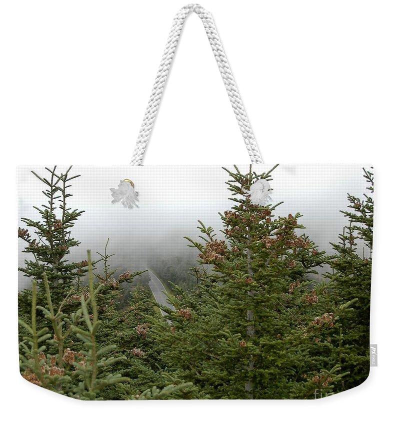 Living Room Weekender Tote Bag featuring the photograph Looking Down From Mnt. Mitchell by Johnnie Stanfield