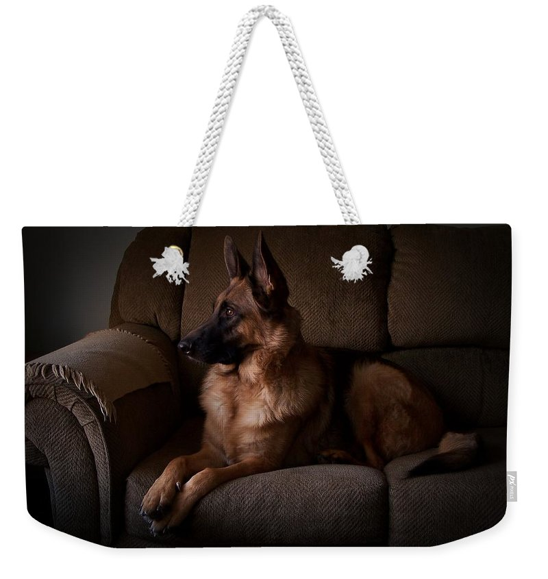 German Shepherd Dogs Weekender Tote Bag featuring the photograph Looking Out The Window - German Shepherd Dog by Angie Tirado