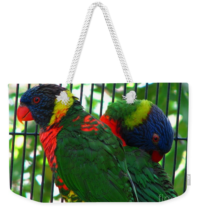 Patzer Weekender Tote Bag featuring the photograph Lory by Greg Patzer