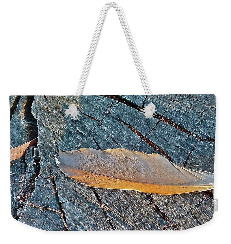 Bird Weekender Tote Bag featuring the photograph Lost Feather by Diana Hatcher