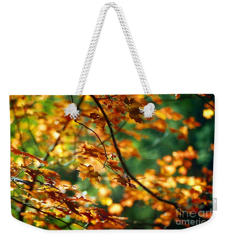 Fall Color Weekender Tote Bag featuring the photograph Lost In Leaves by Kathy McClure