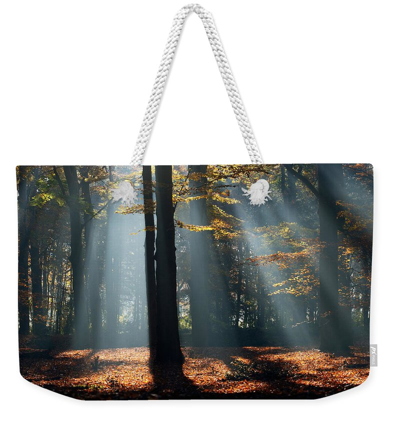Autumn Weekender Tote Bag featuring the photograph Lost In The Light by Roeselien Raimond
