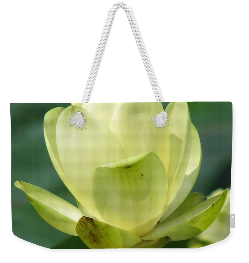 Lotus Weekender Tote Bag featuring the photograph Lotus by Amanda Barcon