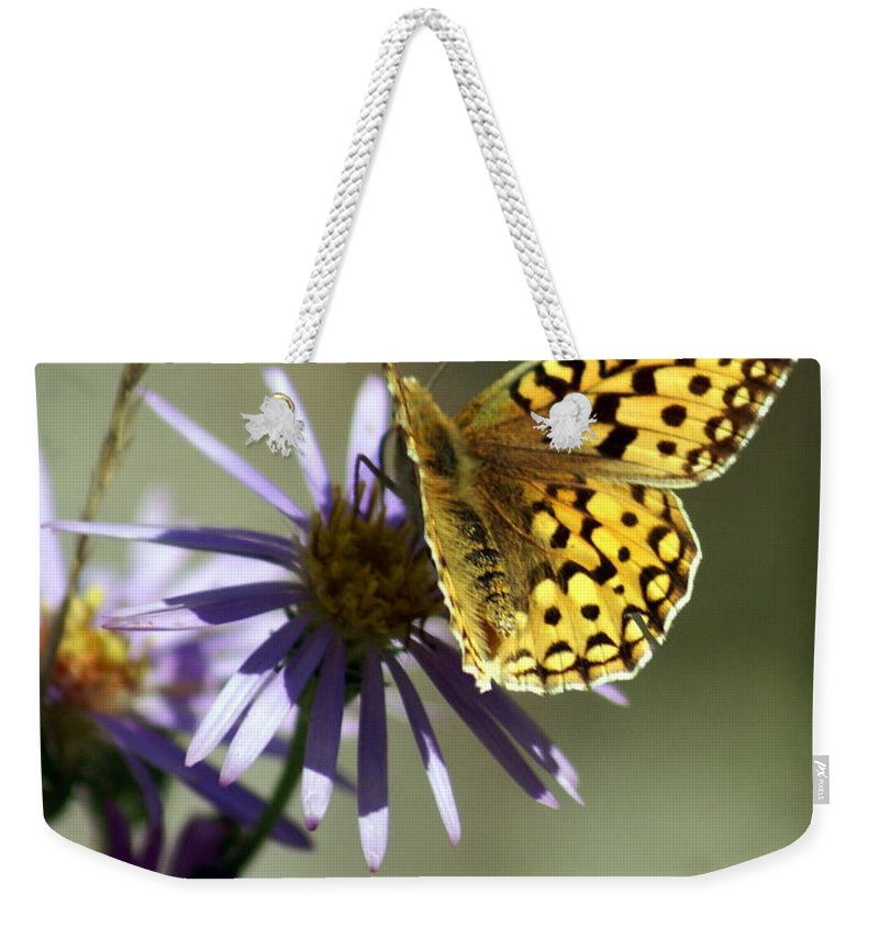 Love Weekender Tote Bag featuring the greeting card Love 1 by Marty Koch