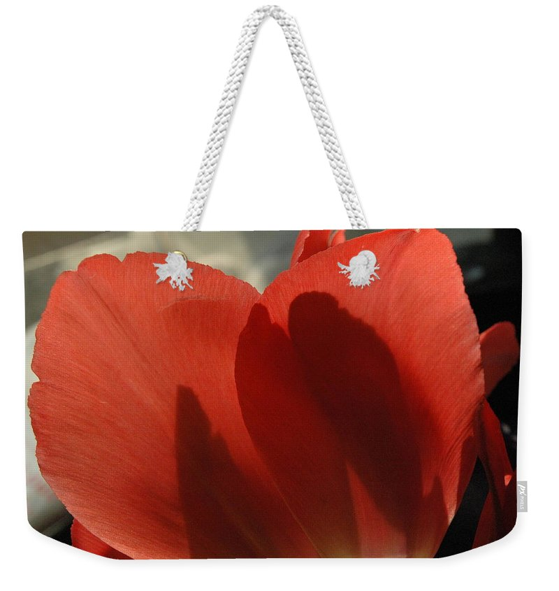 Tulips Weekender Tote Bag featuring the photograph Love Of A Tulip by Trish Hale