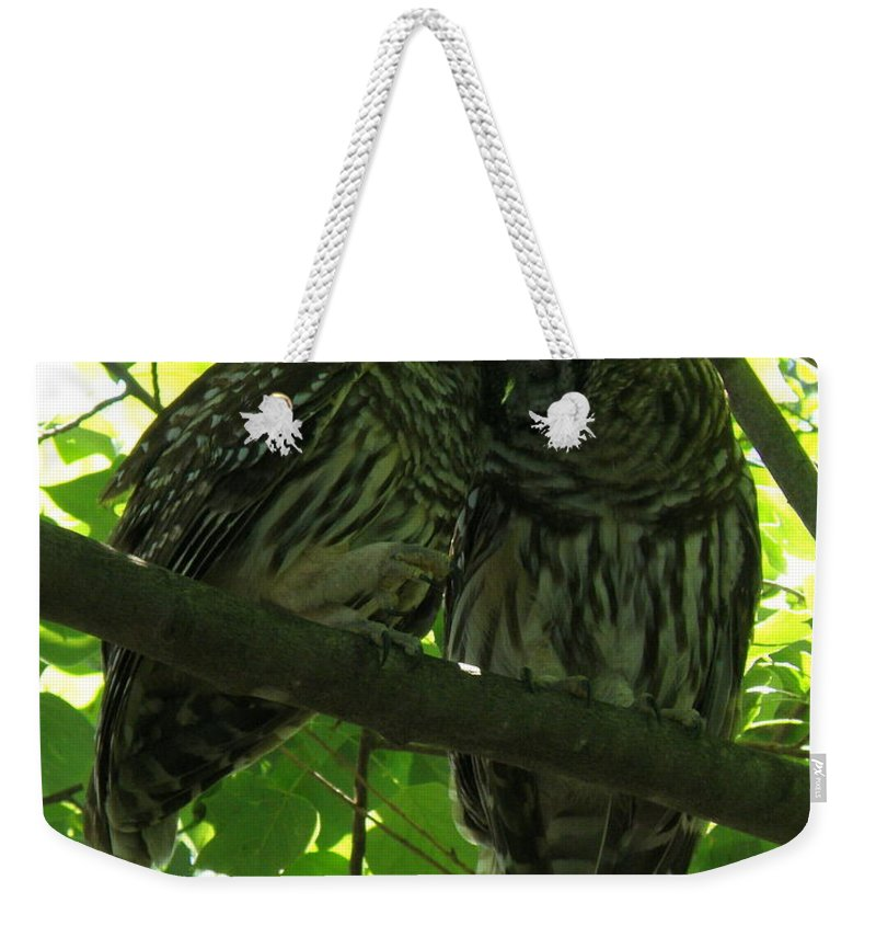Owls Weekender Tote Bag featuring the photograph Love Owls by Lainie Wrightson