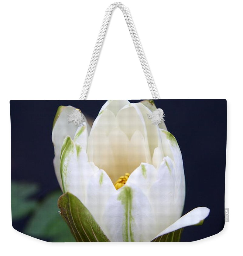 Waterliy Weekender Tote Bag featuring the photograph Loveliness by Christiane Schulze Art And Photography