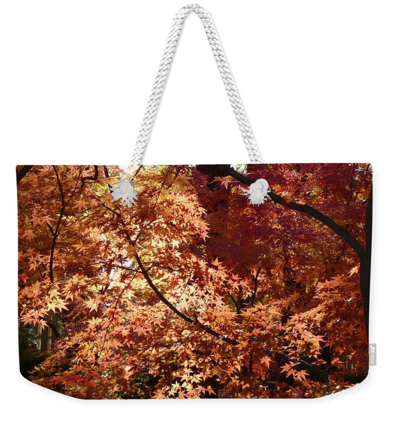 Fall Landscape Photograph Weekender Tote Bag featuring the photograph Lovely Autumn Tree by Carol Groenen
