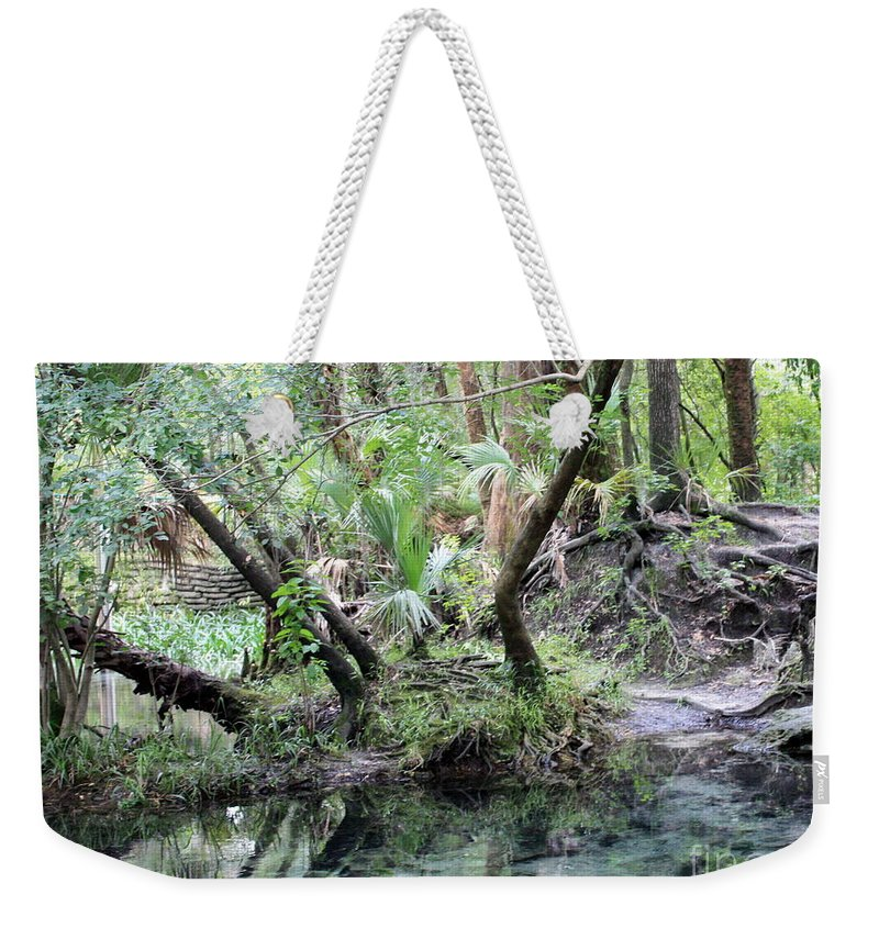 Landscape Weekender Tote Bag featuring the photograph Lovely Lithia Springs by Carol Groenen