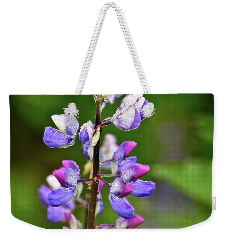 Lupine Weekender Tote Bag featuring the photograph Lovely Lupine by Diana Hatcher