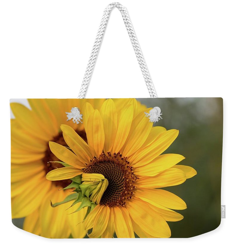 Lovely Sunflowers Weekender Tote Bag featuring the photograph Lovely Sunflowers by Lynn Hopwood