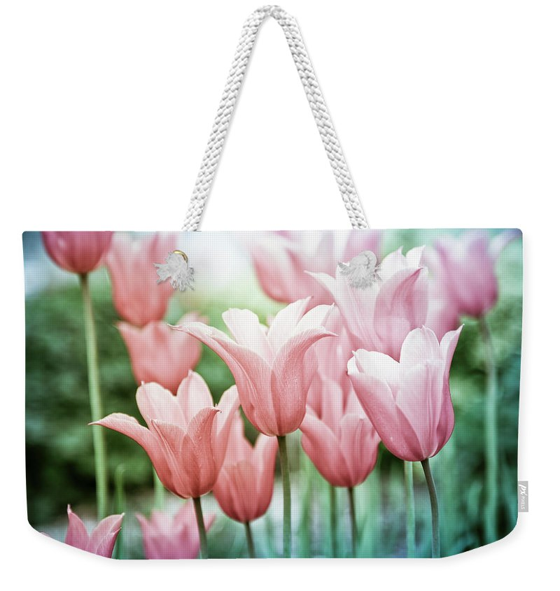 Romance Weekender Tote Bag featuring the photograph Lovely Tulips by Maria Heyens