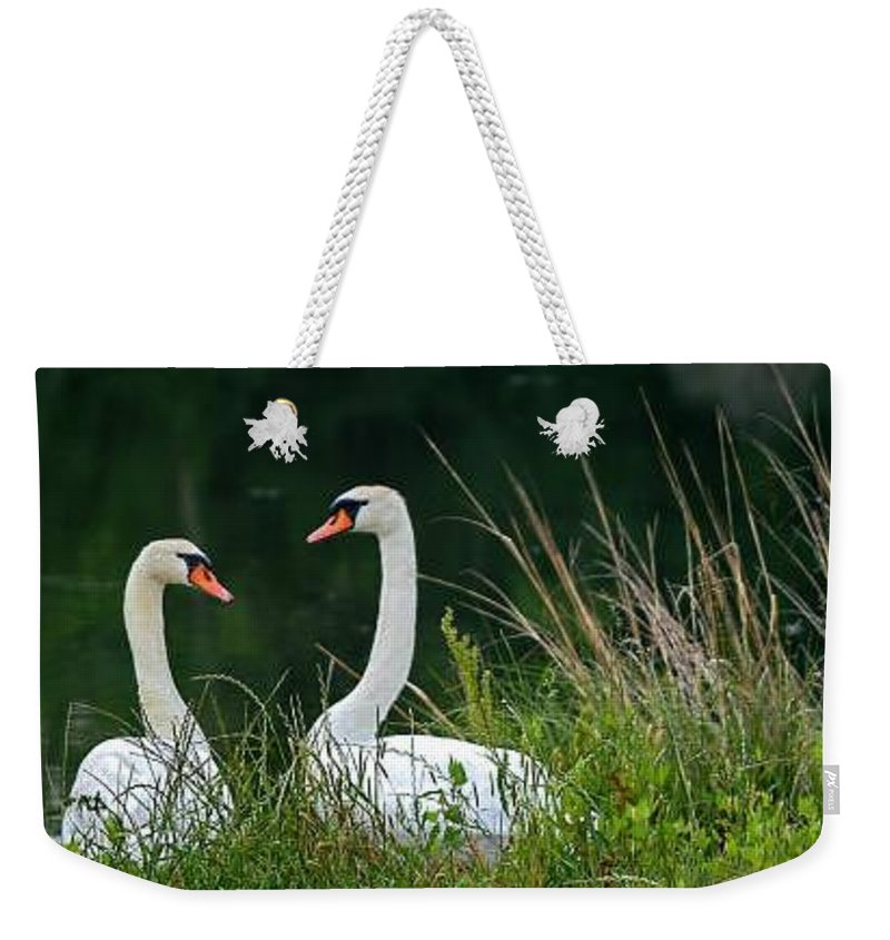 Clay Weekender Tote Bag featuring the photograph Loving Swans by Clayton Bruster