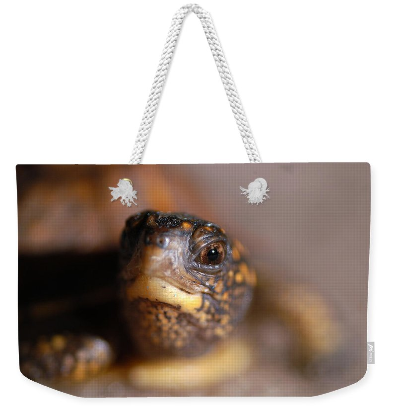 Clay Weekender Tote Bag featuring the photograph Lucky by Clayton Bruster