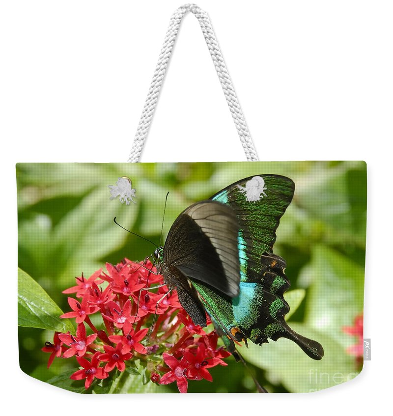 Luminescence Weekender Tote Bag featuring the photograph Luminescence by David Lee Thompson