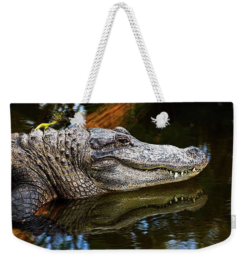 Alligator Weekender Tote Bag featuring the photograph Lump On A Log by Christopher Holmes
