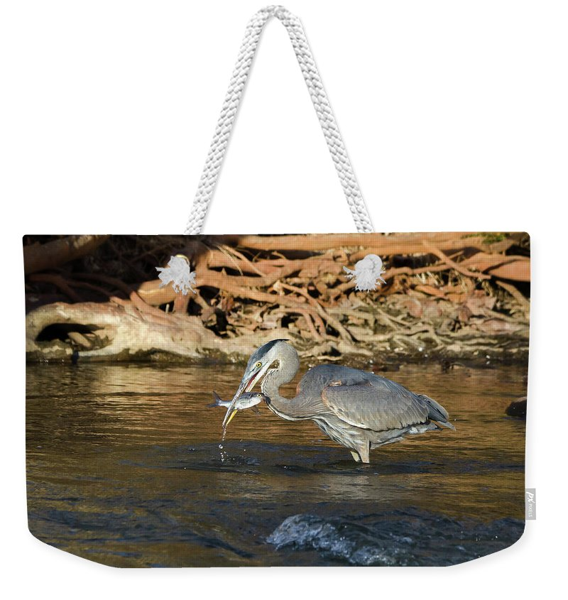 Heron Weekender Tote Bag featuring the photograph Lunch On The Neuse River by George Randy Bass