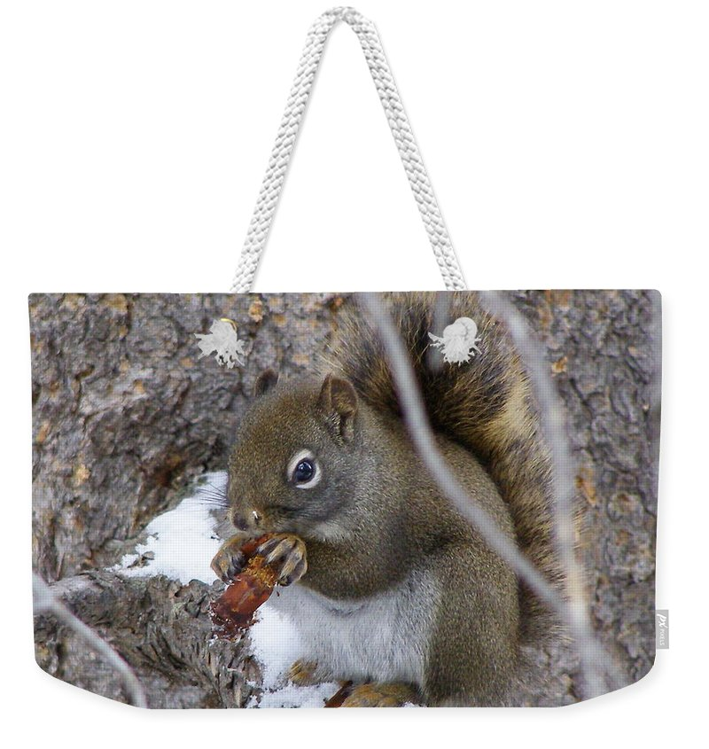Squirrel Weekender Tote Bag featuring the photograph Lunch On The Patio by DeeLon Merritt