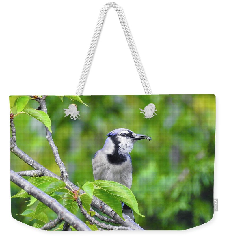 Weekender Tote Bag featuring the photograph Lunch by Tony Umana